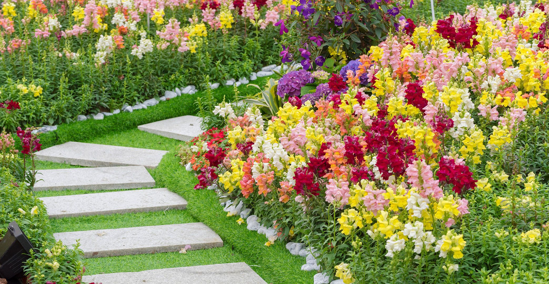 Professional landscaping services in leesburg virginia landscaping workwithnaturefo
